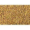 Indian Fenugreek Seeds Whole
