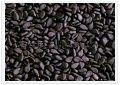 Indian Natural Sesame Seeds Black