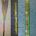 Disha 5D Azhagmayil Grass Broom