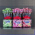 Candy Dinger lollipops