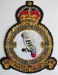 Embroidered Squadron Badges