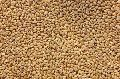 Tukdi Wheat