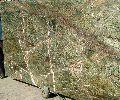 Rainforest Marble Slabs