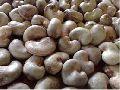 Top Quality Raw Cashew Nut
