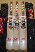 Bdm Cricket Bat Dynamic Power Twenty-20