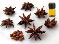 Anis Seed Essential Oil