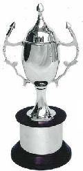 Brass Sports Trophy (s-259)