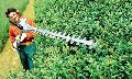 STIHL extended lenght hedge trimmers