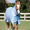 Horse Mesh Rugs