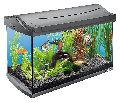 Imported Fish Aquariums