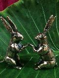 Bunny the buddies