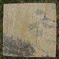 Fossil Mint Sandstone Tile