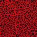 African Print Fabrics Item Code : APF 03