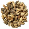 Natural Dried Neem Kernels