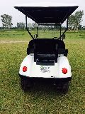 2 Seater Golf Carts