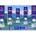 Lotus Flavoured Incense Sticks