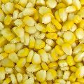 Fresh Frozen Sweet Corn