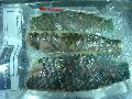 Parrot Fish Fillets