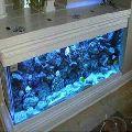Curved Glass Aquarium