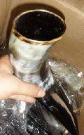 Cow Bottle Horn