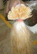 Prebonded Blonde