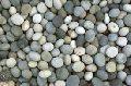 Pebbles Stone