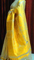 Golden Tissue Sarees