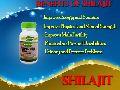 Benifits of Shilajit Capsule