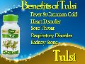 Herbal Supplement, Tulsi Capsule from India