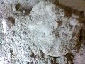 C Type Fly Ash