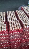 COUNTRY CHICKEN TABLE EGGS & BROWN TABLE EGGS