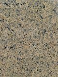 Panther Yellow Granite Slabs