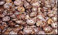 Sliced Betel Nuts
